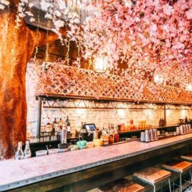 Pretty In Pink: 16 Spring-Friendly Ideas From National Cherry Blossom Festival Events