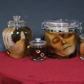 Weird Science: 9 Rental Items for Setting a Morbid Mood